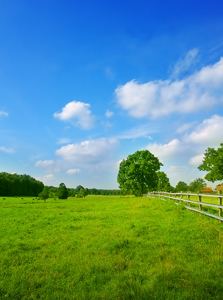 property-invest-land